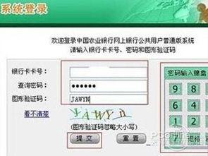 农行银行卡余额查询(17岁能在哪儿成功借款)_1582人推荐