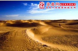 做梦梦到在沙漠找水