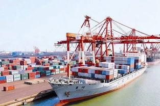 唐山港为什么被特停
