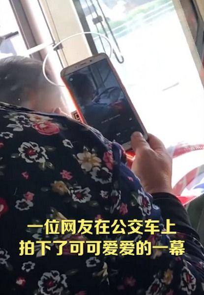 老奶奶坐公交对着司机的头扫码