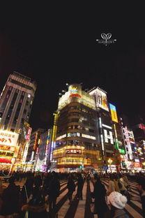新东京旅游攻略