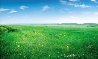 跟草原有关的诗词
