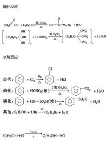 高中有机化学基础知识