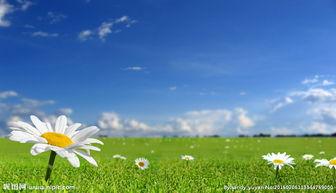 唯美自然景色图片
