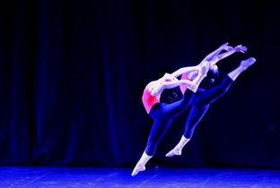 舞蹈类专业有哪些