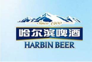 哈尔滨啤酒股票代号