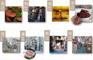 揭秘 维特健灵创始人谢德富 卧龙藏凤 的名门家族